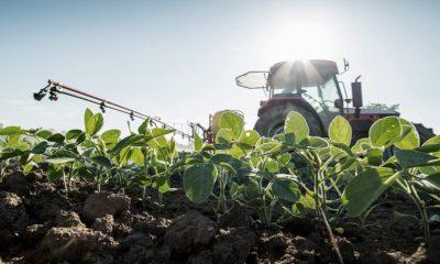 retenciones productos agrícolas primarios
