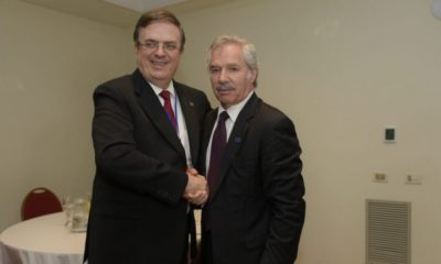 Argentina acordó con México apoyar a Espinosa para evitar la relección de Almagro como Secretario General de la OEA