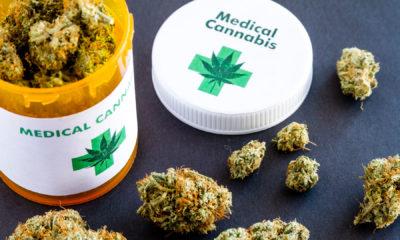 defensoria casación cannabis medicinal inta