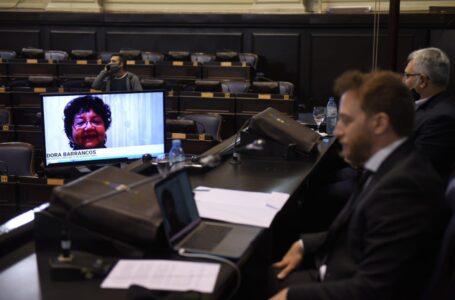 La Cámara de Diputados bonaerenses realizó una capacitación telemática por la Ley Micaela